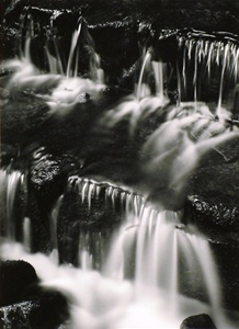 Fern Spring, Dusk, Yosemite Valley, California, about 1962