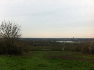 View from Horsenden Hill